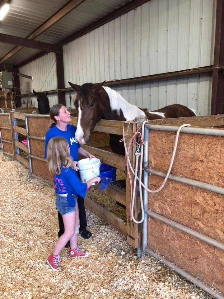 every horse loves treats Hooties Horse Haven Leesburg Ga